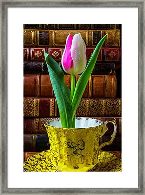 Tulip In A Tea Cup Framed Print