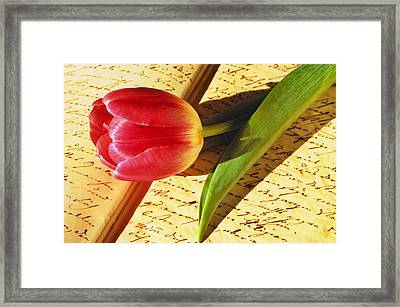 Tulip On An Open Antique Book Framed Print by Tony Ramos