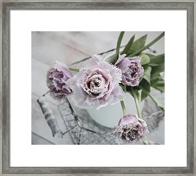 Tulip Ruffles Framed Print