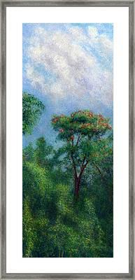 Tulip Tree Framed Print by Kenneth Grzesik