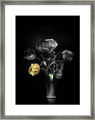Tulips 2 Framed Print by Ivan Vukelic