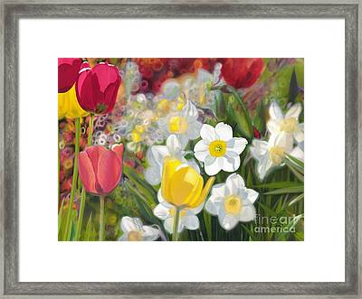 Tulips And Daffodils Framed Print by Nicole Shaw