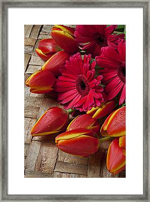 Tulips And Red Daisies  Framed Print by Garry Gay