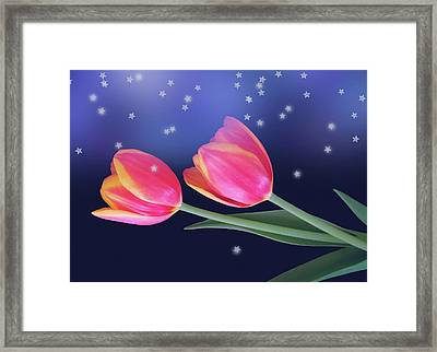 Tulips And Stars Framed Print