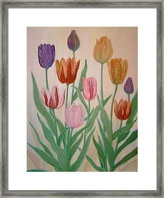 Tulips Framed Print by Ben Kiger