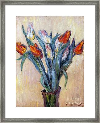 Tulips Framed Print by Claude Monet