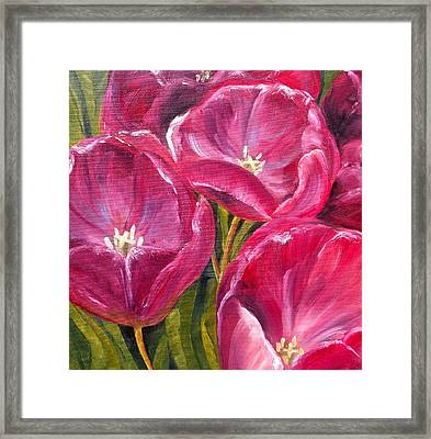 Tulips Framed Print by Diane Daigle