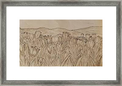 Tulips Dream Sketch Framed Print