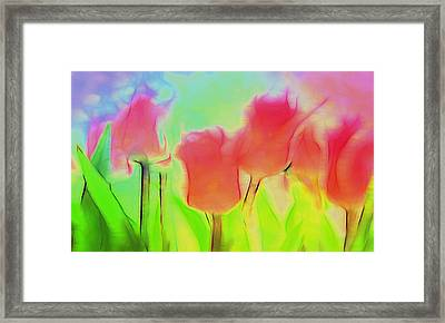 Tulips In Abstract 2 Framed Print by Cathy Anderson