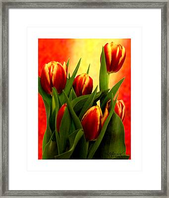 Tulips Jgibney Signature  5-2-2010 Greenville Sc The Museum Zazzle For Faa20c Framed Print