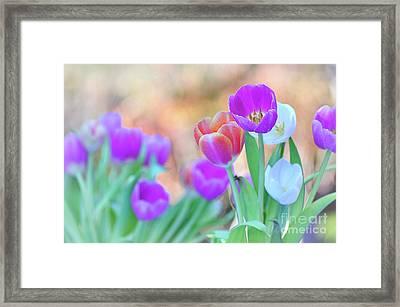 Tulips On Pastel Bokeh Framed Print