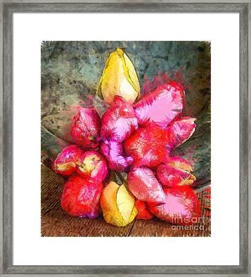 Tulips Pencil Framed Print by Edward Fielding