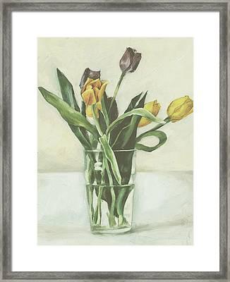 Tulips Framed Print by Sarah Madsen
