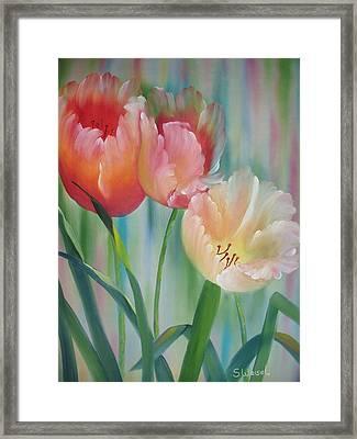 Tulips Framed Print by Sherry Winkler