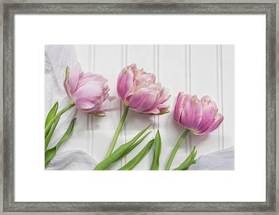 Tulips Three Framed Print