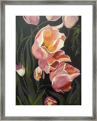 Tulips Tumbling Framed Print