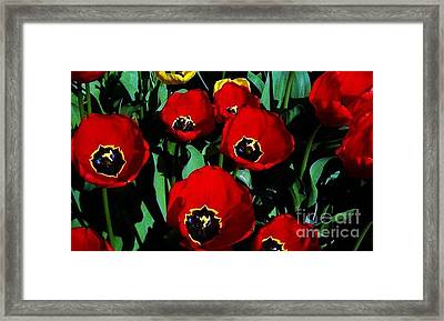Framed Print featuring the photograph Tulips by Vanessa Palomino