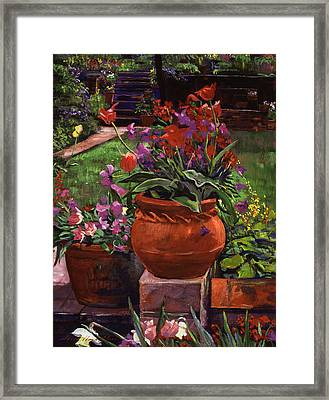 Tulips, Violas And Wallflowers Framed Print by David Lloyd Glover