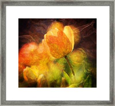 Tulips With A Moderntwist Framed Print