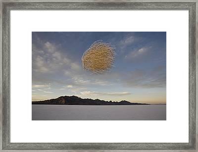 Tumbleweed In Mid Air Framed Print by John Burcham