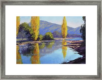 Tumut River Poplars Framed Print