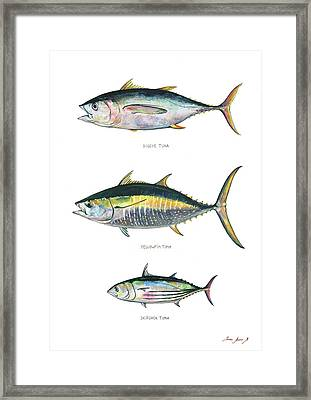Tuna Fishes Framed Print