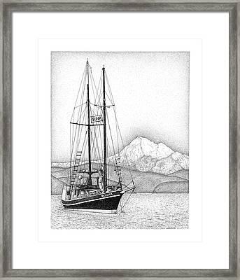 Tuna For Sale Framed Print