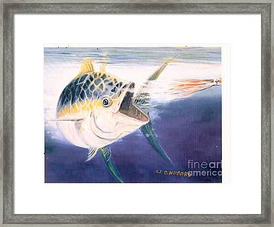 Tuna To The Lure Framed Print by Bill Hubbard