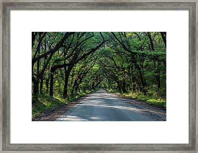 Framed Print featuring the photograph Tunnel On Botany Bay by Jon Glaser