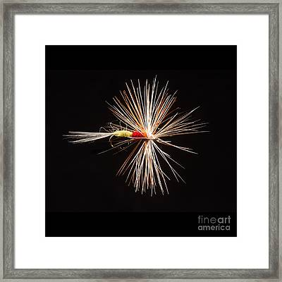 Tups Indispensible Framed Print
