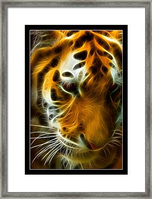 Turbulent Tiger Framed Print