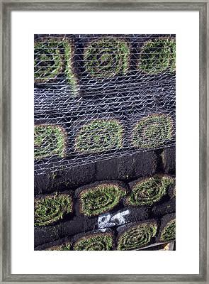 Turfs Up Framed Print by Jez C Self