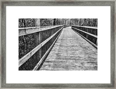 Turkey Creek Boardwalk Framed Print by JC Findley