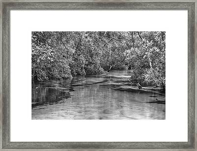Turkey Creek In Black And White Framed Print