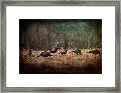 Turkey Day At Grandpas Farm Framed Print by Jai Johnson