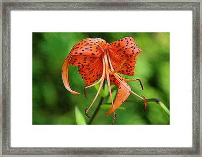 Framed Print featuring the photograph Turn Up The Heat by Michiale Schneider
