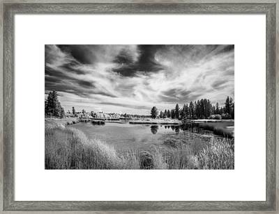 Turnbull In The Afternoon Framed Print