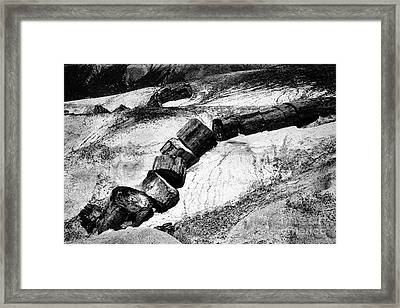 Framed Print featuring the photograph Turned To Stone by Paul W Faust - Impressions of Light