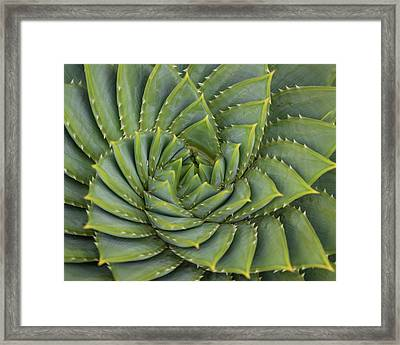 Turning Framed Print