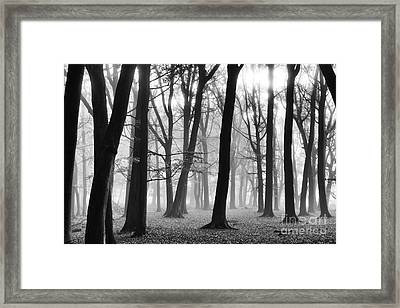 Turning Of The Season Framed Print