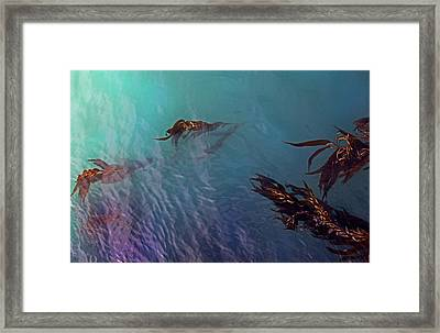 Turquoise Current And Seaweed Framed Print