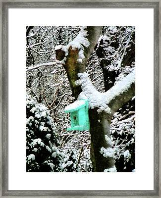 Turquoise Birdhouse In Winter Framed Print by Susan Savad