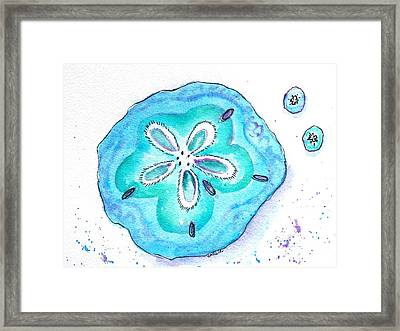 Turquoise Blue Sand Dollar Shells Framed Print