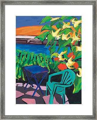 Turquoise Chair And Geranium Framed Print by Sarah Gillard
