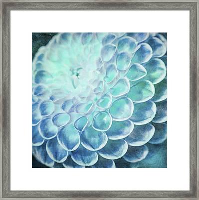 Turquoise Dahlia Framed Print