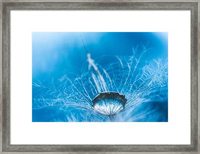 Turquoise Framed Print by Elena E Giorgi