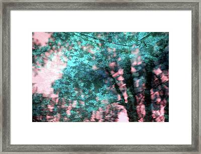 Turquoise Forest Framed Print by Carolyn Stagger Cokley