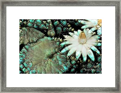Turquoise Waterlilies 3 Framed Print by Amy Cicconi