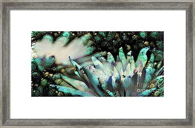 Turquoise Waterlilies 4 Framed Print by Amy Cicconi