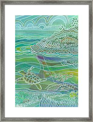 Turtle At The Copper Sweeper Reef Framed Print